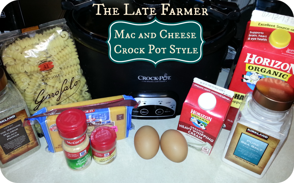 Mac and Cheese Crock Pot Style