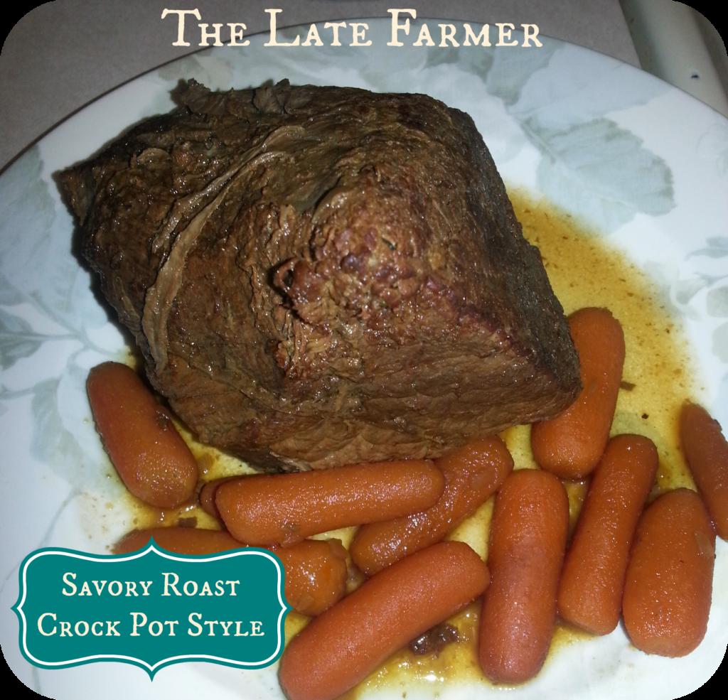 Savory Roast Crock Pot Style