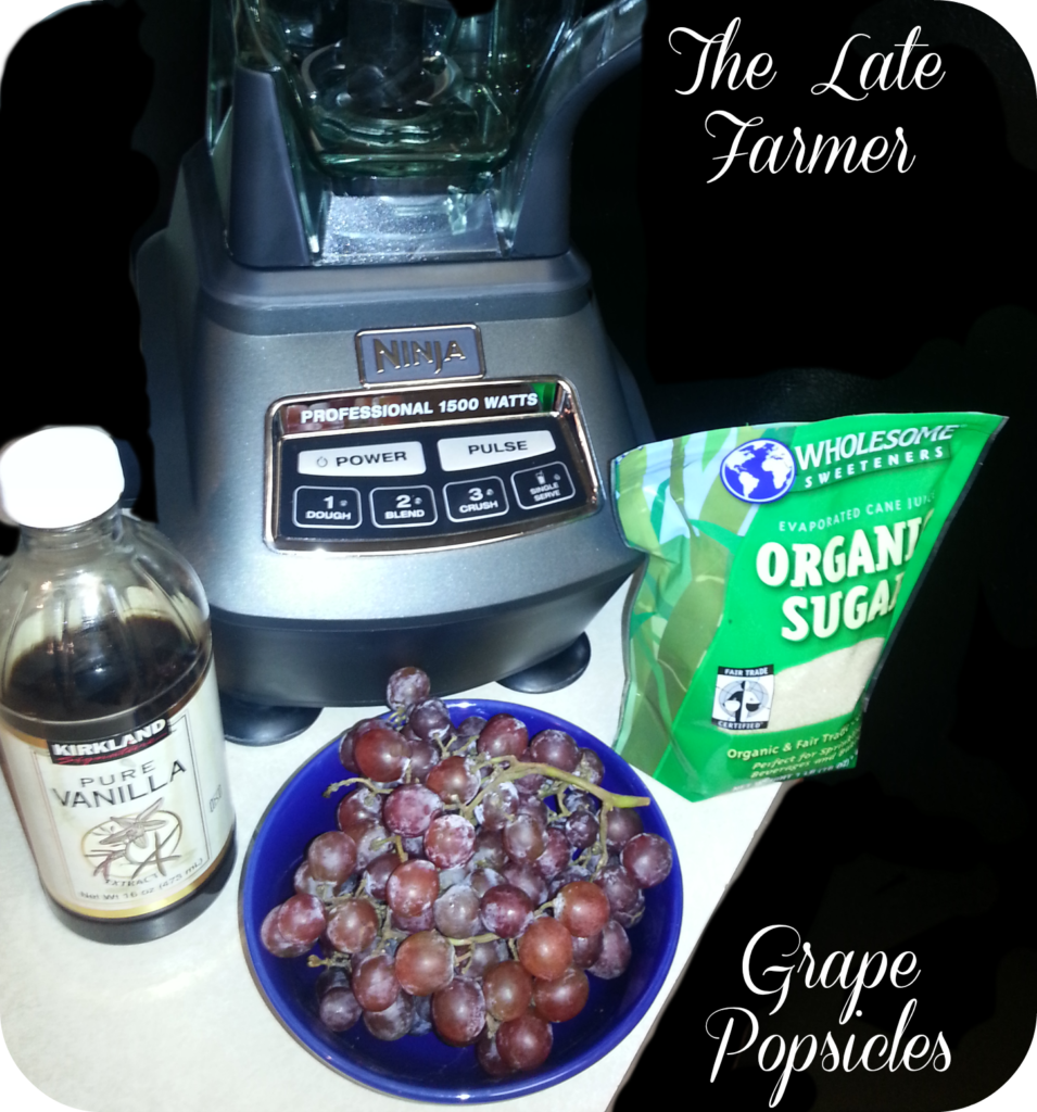 GrapePopsicles3