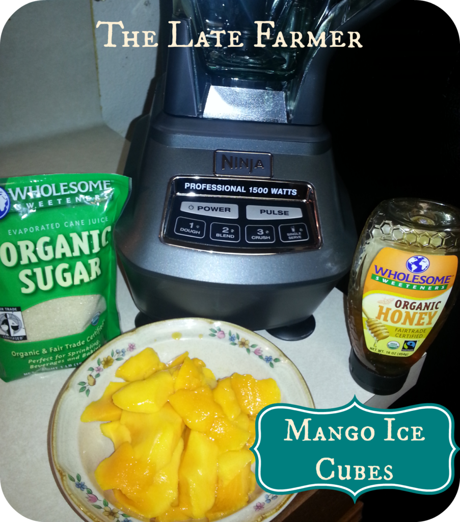 Lego Mango Ice Cubes easy treat for kids or use to add a mango flavor to your favorite drink!