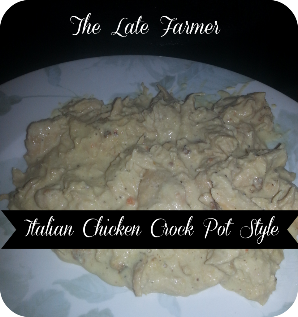 Italian Chicken Crock Pot Style