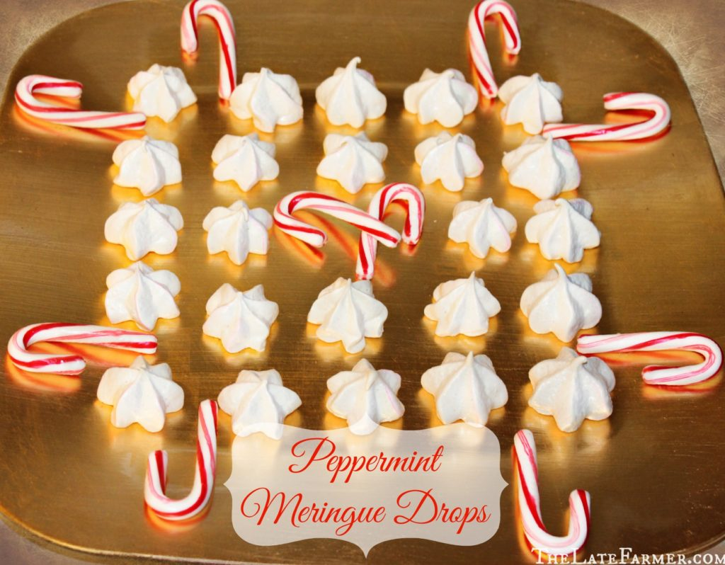 Peppermint Meringue Drops - TheLateFarmer.com