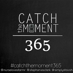 Catch The Moment 265