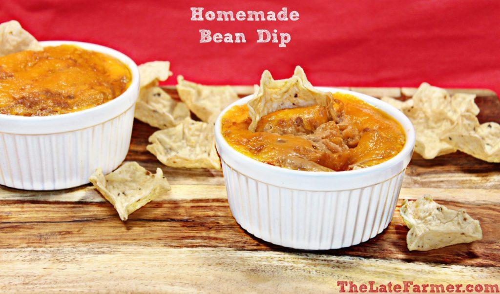 Homemade Bean Dip
